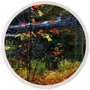Fall Forest And River Round Beach Towel