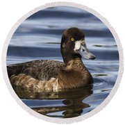 Female Scaup Round Beach Towel