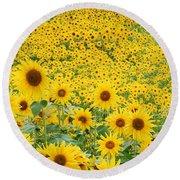 Field Of Sunflowers Helianthus Sp Round Beach Towel