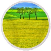 Fields Of Dreams Round Beach Towel