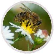 Flowering Bee Round Beach Towel
