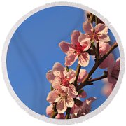 Flowering Peach Tree Round Beach Towel