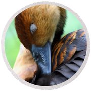 Fulvous Whistling Duck Round Beach Towel