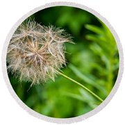 Goat's Beard Round Beach Towel