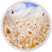 Golden Field Round Beach Towel
