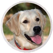 Golden Retriever Dog Round Beach Towel