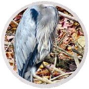 Great Blue Round Beach Towel