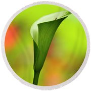 Green Calla Lily Round Beach Towel