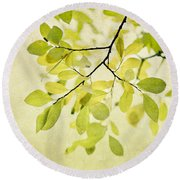 Green Foliage Series Round Beach Towel