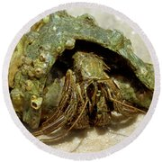 Green Striped Hermit Crab Round Beach Towel
