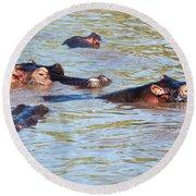 Hippopotamus Group In River. Serengeti. Tanzania. Round Beach Towel