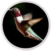 Hummingbird Male Anna Round Beach Towel