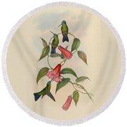 Hummingbirds Round Beach Towel by Philip Ralley