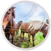 Icelandic Ponies Round Beach Towel