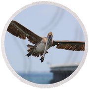 Incoming Pelican Round Beach Towel