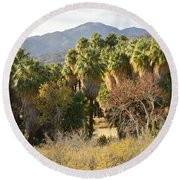 Indian Canyons Round Beach Towel