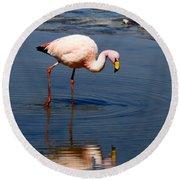 James Or Puna Flamingo Round Beach Towel