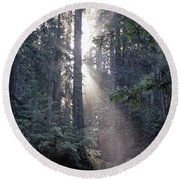 Jedediah Smith Redwoods State Park Redwoods National Park Del No Round Beach Towel