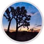 Josua Trees Beautifully Lit During Sunrise In Joshua Tree Nation Round Beach Towel