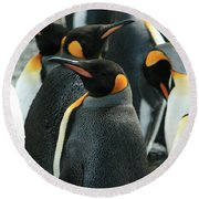 King Penguin Colony Round Beach Towel