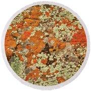 Lichen Abstract Round Beach Towel