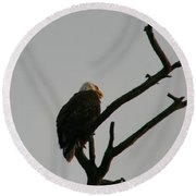 Looking Up To Bald Eagle's Round Beach Towel