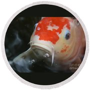 Lucky Koi 1 Round Beach Towel