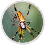 Male And Female Silk Spiders With Prey Round Beach Towel