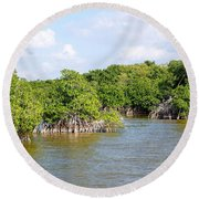 Mangrove Forest Round Beach Towel by Carol Ailles