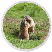Marmots Round Beach Towel