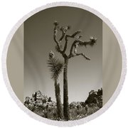 Joshua Tree National Park Landscape No 2 In Sepia Round Beach Towel