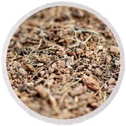 Mulch Round Beach Towel