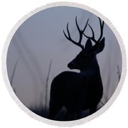 Mule Deer Buck At Sunset Round Beach Towel