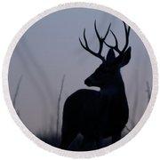 Mule Deer Buck At Sunset Round Beach Towel