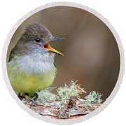 Pale-edged Flycatcher Round Beach Towel