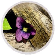 Peeking Violet Round Beach Towel