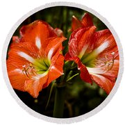 Petal Pair Round Beach Towel