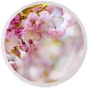 Pink Cherry Blossoms  Round Beach Towel