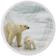 Polar Bear With Cub Round Beach Towel