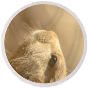 Prairie Dog Round Beach Towel