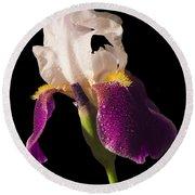 Purple And White Bearded Iris Round Beach Towel