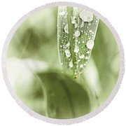 Raindrops On Grass Round Beach Towel