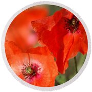 Red Poppies Round Beach Towel