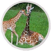 Reticulated Giraffe Calf With Mother Round Beach Towel