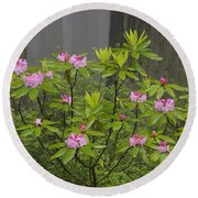 Rhododendron In Del Norte State Park, Ca Round Beach Towel