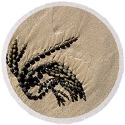Seaweed On Beach Round Beach Towel