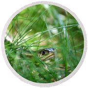 Snake In The Grass Round Beach Towel