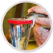 Snake Venom Extraction Round Beach Towel