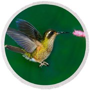 Speckled Hummingbird Round Beach Towel