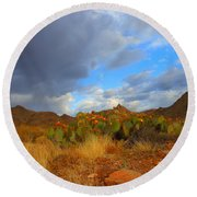 Springtime In Arizona Round Beach Towel